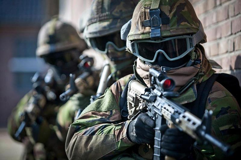 11 Luchtmobiele Brigade (����������)