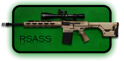 Снайперская Винтовка Remington RSASS